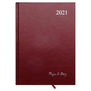 2021 A5 Diary Page A Day 3 Assorted