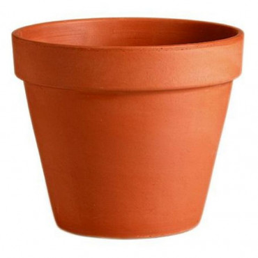 25Cm 10In Pot Terracotta
