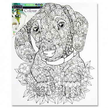 Icon 300X250Mm Colour My Canvas Doggy
