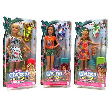 Barbie Birthday Surprise  Sister and Pet Accessory