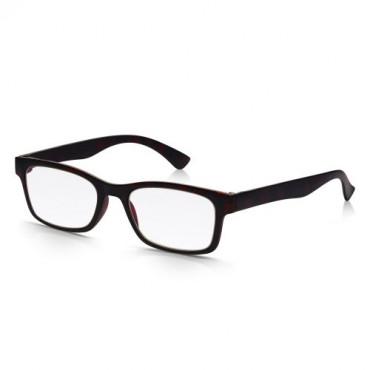 Reading Glasses +2.50