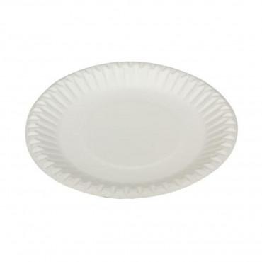 Party Plates 12Pk