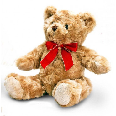 Teddy Bear Traditional With Ribbon