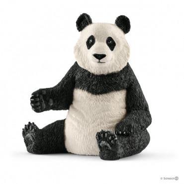 Giant Panda Female