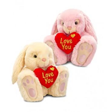 Bunny Teddy W/Heart Assorted 25Cm