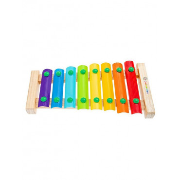 Cocomelon First Act Instrument  Xylophone